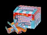Crackling-Grondbloemen-(25-stuks)